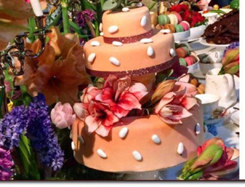 Charla 19 de junio: Alimentación y menopausia