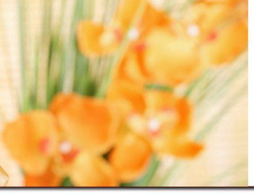 ¿Qué es la medicina integrativa? · Nuevo artículo en Ella y el abanico