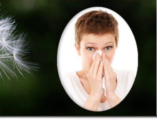 ¿Te afectan las alergias primaverales? Esta información te interesa