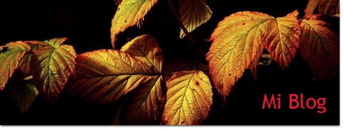 Acupuntura · Medicina china y alimentos de otoño