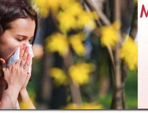 """""""Las alergias en primavera nos alteran nuestra salud"""". Último artículo en Saludemujer"""